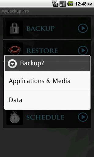 How To Make Local Backups Of Your Android Phone Data - MyBackup Pro Screenshot